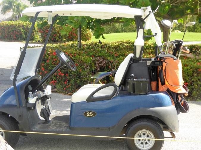 Lintu ja golf auto.jpg